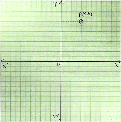 Plot Points on Coordinate Graph