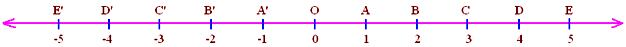 Representation of Rational Numbers on the Number Line