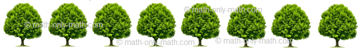 Count Number Eight - Trees