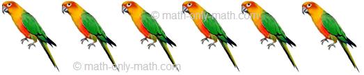 Count Number Six - Birds