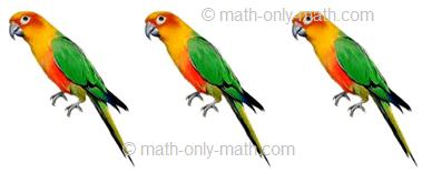 Count Number Three - Birds