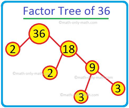 Factor Tree of 36