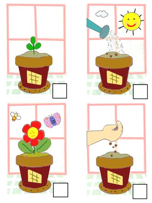 picture regarding 4 Step Sequencing Pictures Printable known as Selection the Photos Cost-free Kindergarten Math Printable