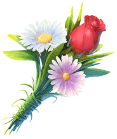 Pictograph Symbol on Bouquets