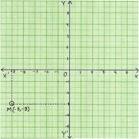 Plot Points On Coordinate Graph | Any Point On X-Axis | Any Point