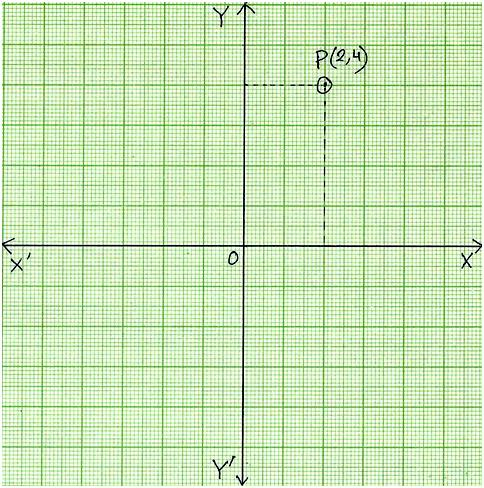 plot points on coordinate graph