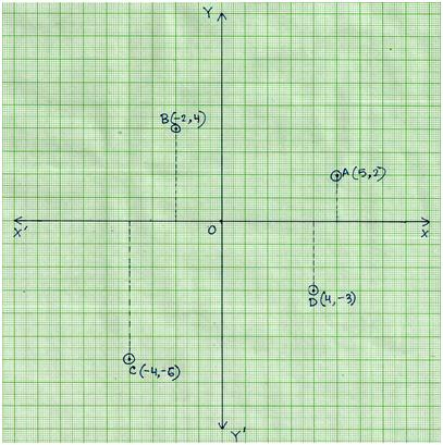 Plot Ordered Pairs  Plot Points On A Graph Paper  Construct Co