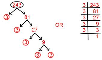 Tree Factorisation Method