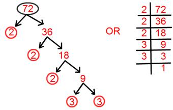 Prime Factorisation Complete Factorisation Tree Factorisation Method