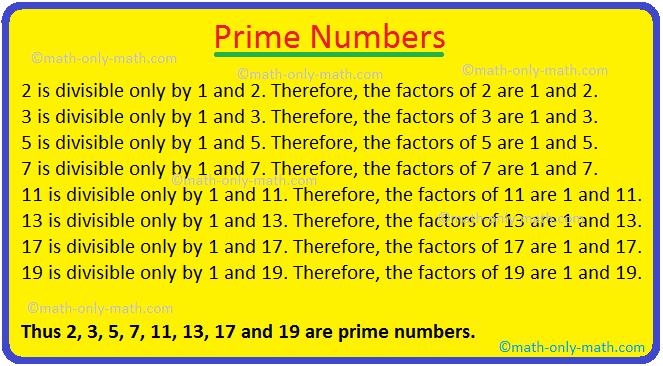 Prime Number