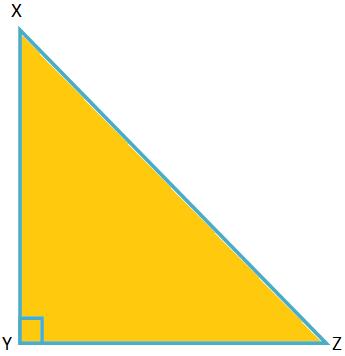 Problems on Pythagoras' Theorem