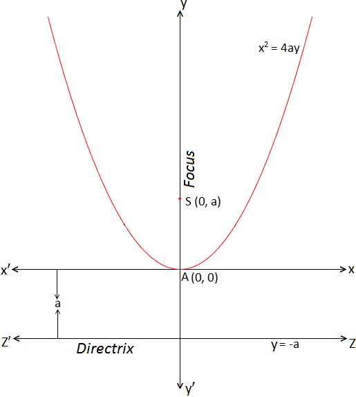 Standard form of Parabola x^2 = 4ay