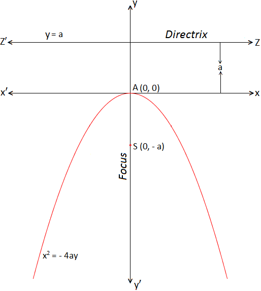 Standard form of Parabola x^2= -4ay