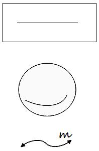 Straight Line Segment