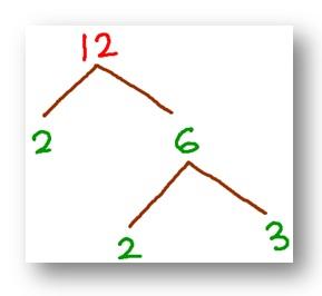 tree factor of 12