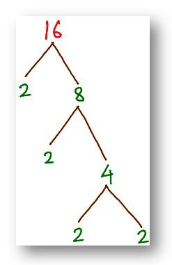 tree factor of 16