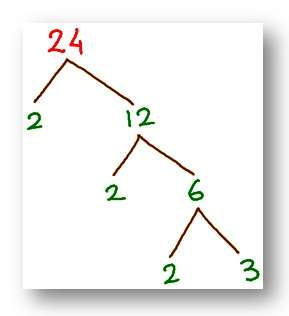 tree factor of 24