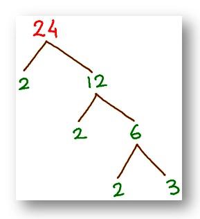 tree factor of 24