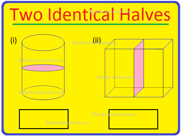 Two Identical Halves