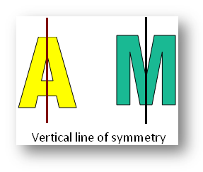 Vertical Line of Symmetry