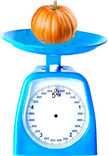 Weight of a Pumpkin