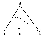 area of triangle worksheet,area worksheet
