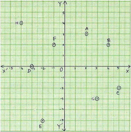 Worksheet on Coordinate Point – Cartesian Plane Worksheet