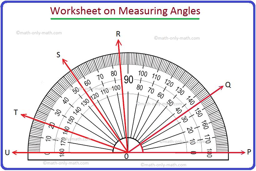 Worksheet on Measuring Angles