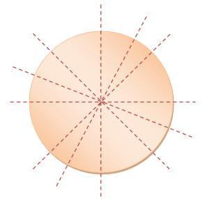 Many – Lines Symmetry
