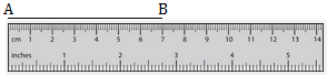 Measure a Line Segment