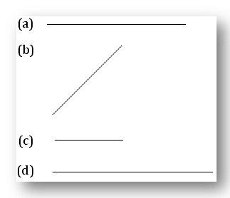 measure these line segments