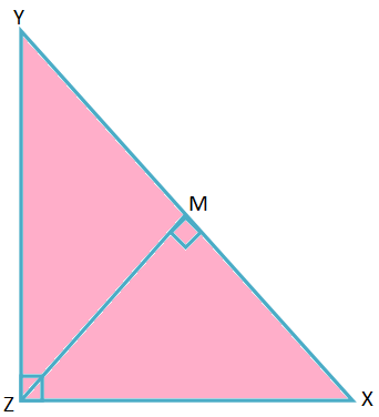 Riders Based on Pythagoras' Theorem
