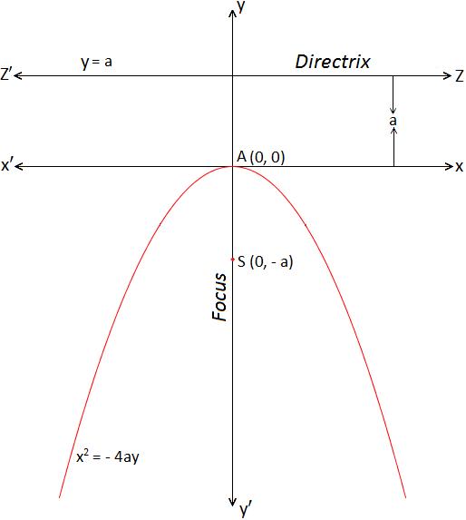 Standard form of Parabola x^2= -4ay