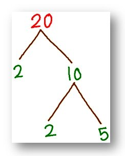 tree factor of 20