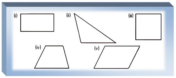 Worksheet On Polygons Types Of The Triangles Draw The